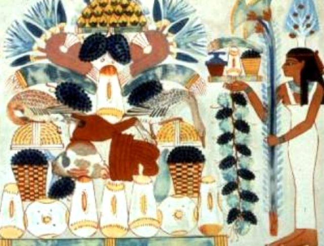 Il cibo degli egizi imparo