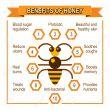 Storia e proprietà del miele