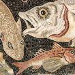 Pesce alimento restaurativo