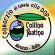 Extravergine di oliva Colline Teatine DOP
