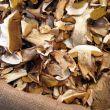 Storia e proprietà funghi porcini secchi
