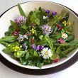 7 consigli per fare l'insalata perfetta