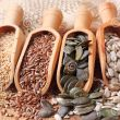 7 semi oleosi salutari per l'alimentazione