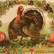 Tacchino della festa del ringraziamento